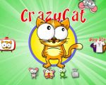 Crazy Cat android game