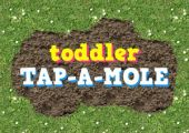 Toddler Tap a Mole