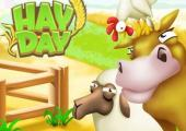 Hay Day...